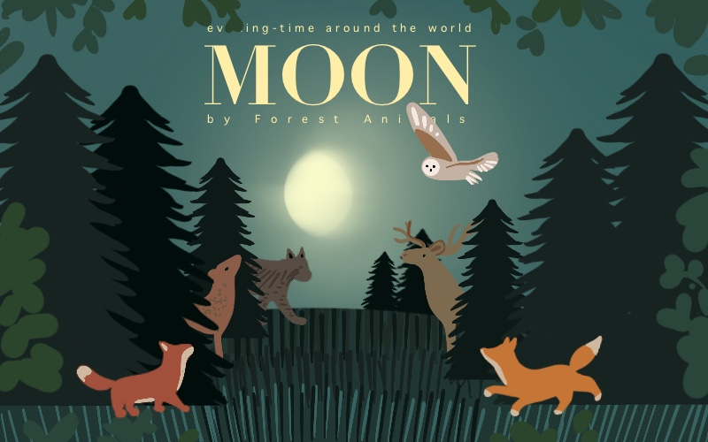 Inspired rendering of : Moon: A Peek-Through Picture Book by Britta Teckentrup (English) Hardcover Book