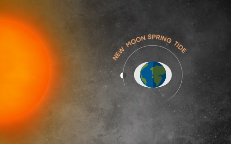 Illustration of the earth in space with the New Moon in an eye-like shape near the sun. from: PWCD - female visionaries.