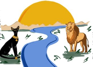 Illustration of a black cat across the river from a lion. from: PWCD - Igbo feminism