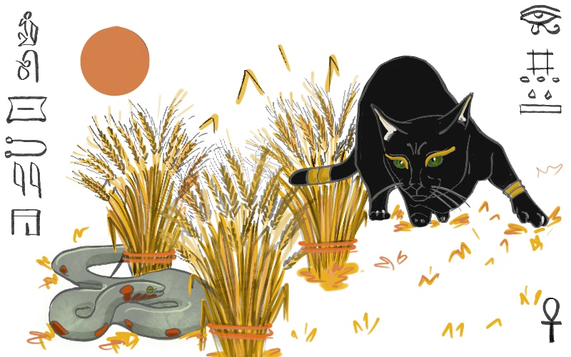 Illustration of a black cat and a snake chasing in the harvest. from: PWCD - Criminalization Of Abortion