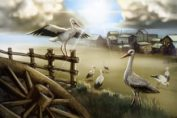 Illustration of an old western-style town with sun and birds. from: PWCD - from: PWCD - Summer 2021 (side cover) - Queer Reproductive Rights,